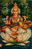 0102 Saraswati Seated Forest Background