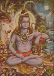 4616 Shiva Seated in Forest