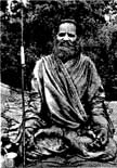 5514 Swami Brahmananda Saraswati in Forest Sitting in Lotus, B-W